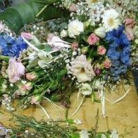 Květiny Trantinová