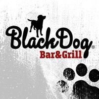 BlackDog Beroun