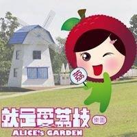 就是愛荔枝樂園-Alice's Garden