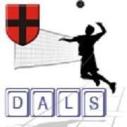 DALS - Dąbrowska Amatorska Liga Siatkówki