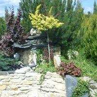 Centrum Ogrodnicze, Kwiaciarnia Dekoflora