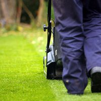 Pro Lawns and Landscaping