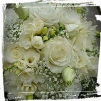 Kwiaciarnia Urszula