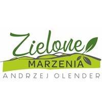 """Szkółka Roślin Ozdobnych """"Zielone Marzenia"""" Andrzej Krzysztof Olender"""