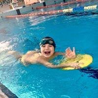 Pływak Bochnia