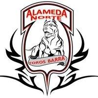 Toros Barra