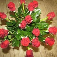 Sklep ogrodniczy Kwiaty u Beaty