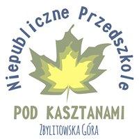"""Niepubliczne Przedszkole """"Pod Kasztanami"""" w Zbylitowskiej Górze"""