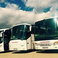 Hammonds Coaches