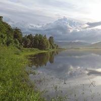 Jezioro Rożnowskie