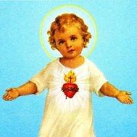 Parafia Rzymskokatolicka pw. Najświętszego Serca Pana Jezusa w Tarnowie
