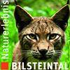 Naturerlebnis Bilsteintal