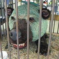 恐怖のメロン熊