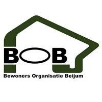 Bewonersorganisatie Beijum