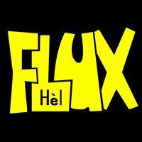 Jongerenvereniging Flux