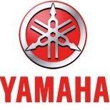 Yamaha Motor Europe N.V. European Branche Office, IM business