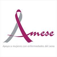 Asociación AMESE - Apoyo a mujeres con enfermedades del seno