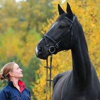 Equine Veterinary Service  Marta Paździoch