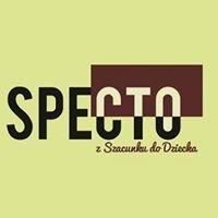 SPECTO-kursy