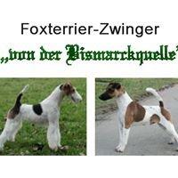 """Foxterrier-Zwinger """"von der Bismarckquelle"""""""