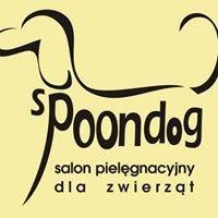 SPOON DOG Tułowice - Salon pielęgnacyjny dla pupili