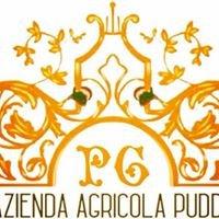 Azienda Agricola Puddu