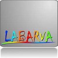 Labarva