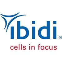 ibidi - cells in focus