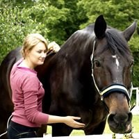 Fizjoterapia koni oraz usługi weterynaryjne Anna Gołyś