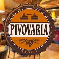 PIVOVARIA Restauracja