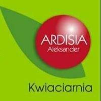 Ardisia Aleksander
