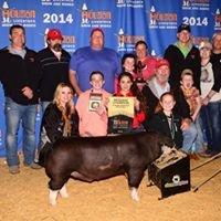 EZ Farms & Ibex Genetics Show Hogs