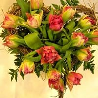 Studio Kwiatowe Akant