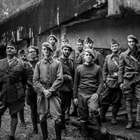 Abri du Bichel-Sud, la Ligne Maginot à Koenigsmacker (A.M.I.L.M.)