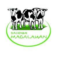 Hacienda Macalauan Inc (Official)