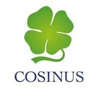 Cosinus Rzeszów - Bezpłatne Szkoły