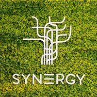 Studio Synergy - innowacyjny trening EMS