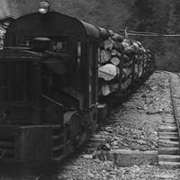 夢をつなごう遠山森林鉄道
