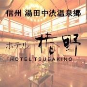 ホテル椿野( Hotel Tsubakino)