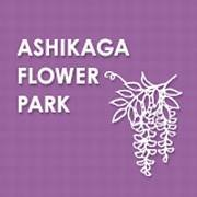 あしかがフラワーパーク/Ashikaga Flower Park