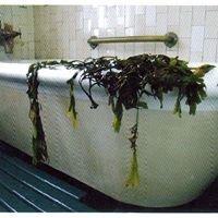 Kilcullens Seaweed Baths
