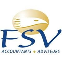 FSV Accountants + Adviseurs