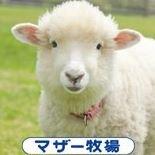 マザー牧場 Mother Farm (official)