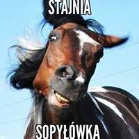 Klub Jeździecki w Węgrowie