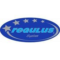 REGULUS-system    Producent grzejników