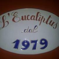 L'eucaliptus