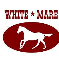 Jazda konna w stylu western i angielskim - White Mare