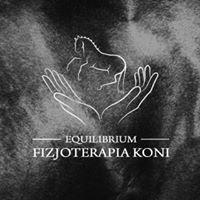 Equilibrium - fizjoterapia koni
