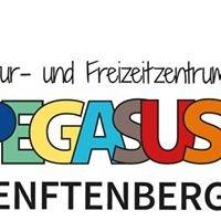 "Kultur- und Freizeitzentrum ""Pegasus"", Senftenberg"