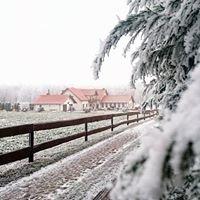 Agroturystyka Zacisze w Broniewicach